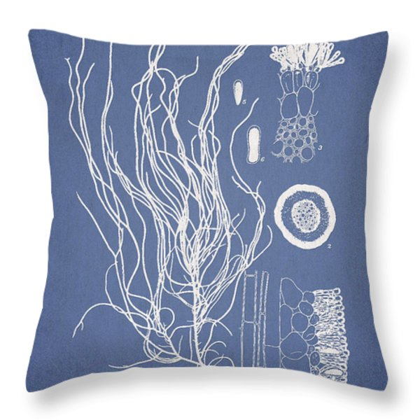 Cladosiphon flagelliformis Throw Pillow by Aged Pixel