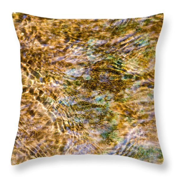 Clean Stream 1 - Featured 2 Throw Pillow by Alexander Senin