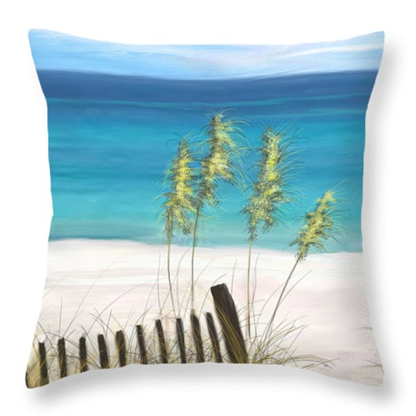 Clear Water Florida Throw Pillow by Anthony Fishburne