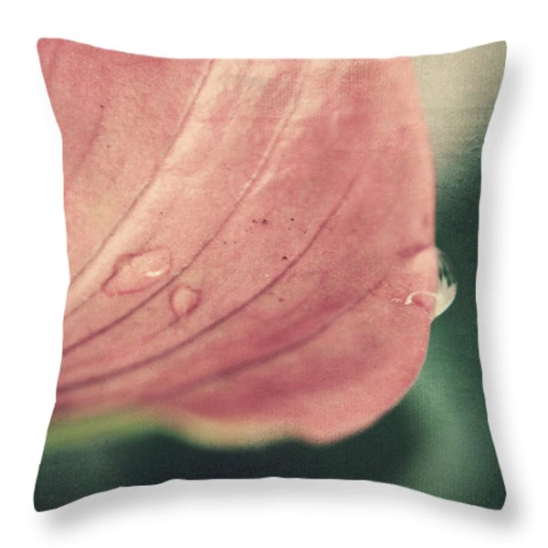 Close To Falling Throw Pillow by Laurie Search