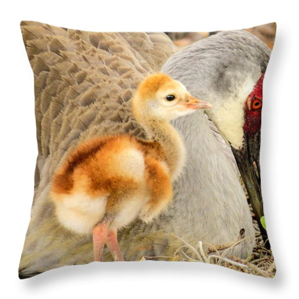 Close To Mother Throw Pillow by Zina Stromberg