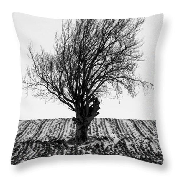 Close Tree In Snow Throw Pillow by John Farnan