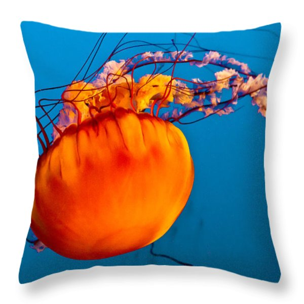 Close Up Of A Sea Nettle Jellyfis Throw Pillow by Eti Reid