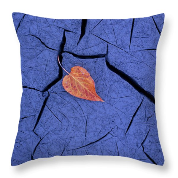 Closeup Of Autumn Colored Cottonwood Throw Pillow by Carl R. Battreall