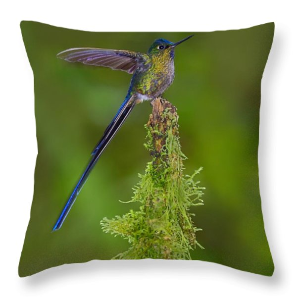 Cloud Forest Fairy Throw Pillow by Tony Beck