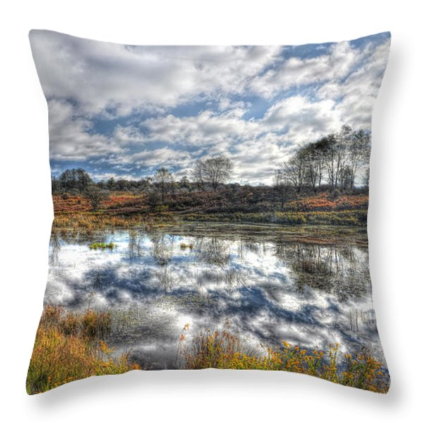 Cloud Reflections In Beaver Pond Canaan Valley Throw Pillow by Dan Friend