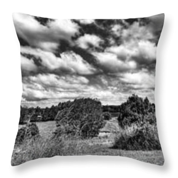 Cloudy Countryside Collage - Black and White Throw Pillow by Kaye Menner