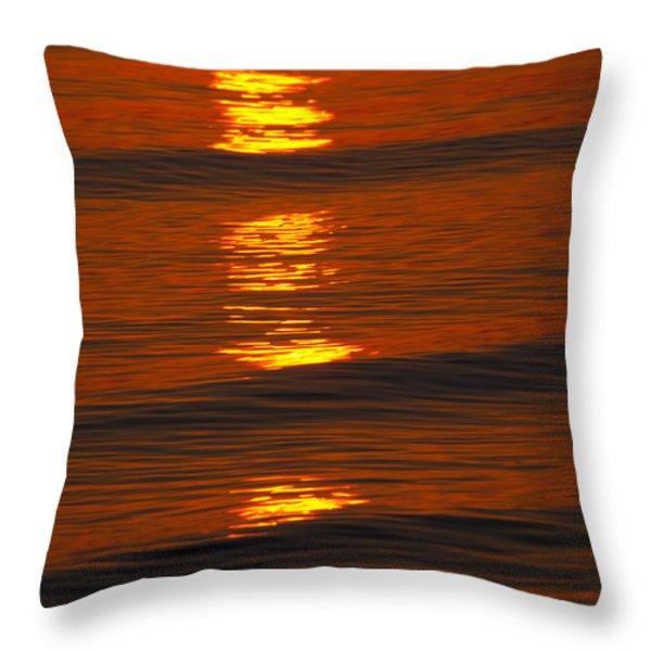 Coastal Abstract Throw Pillow by Karol Livote