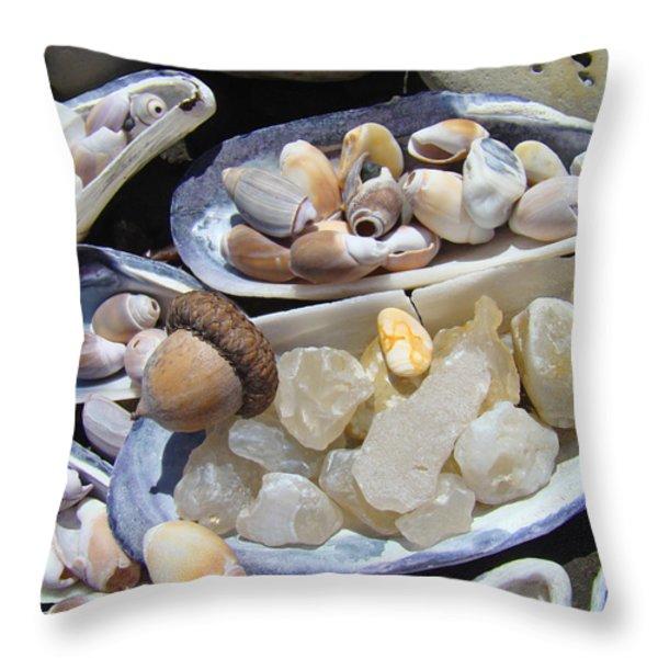 Coastal Beach art Prints Agates Shells Acorn Throw Pillow by Baslee Troutman Coastal Art Prints