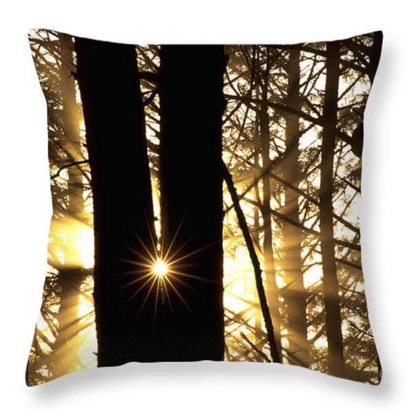 Coastal Forest Throw Pillow by Art Wolfe