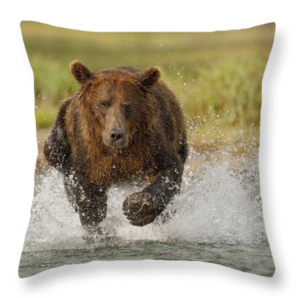 Coastal Grizzly Boar Fishing Throw Pillow by Kent Fredriksson