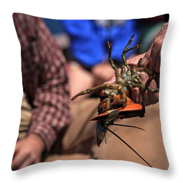Coastal Maine Is Lobster Throw Pillow by Karol Livote