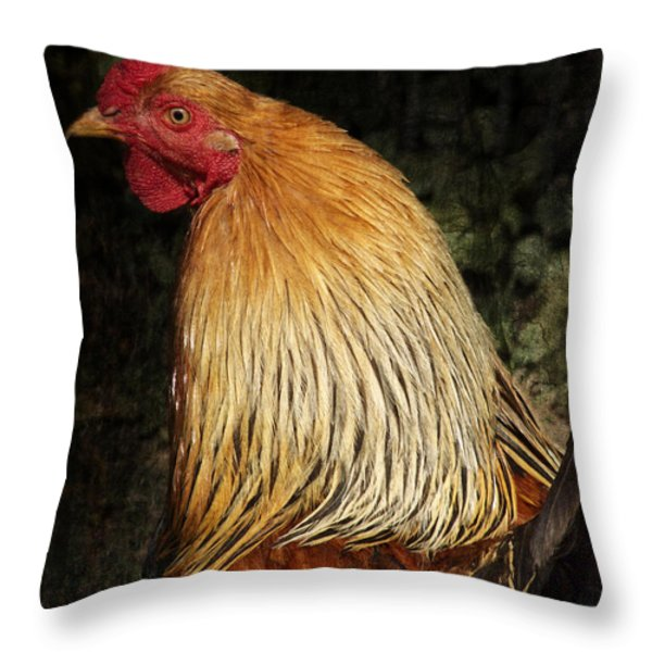Cock Throw Pillow by Angela Doelling AD DESIGN Photo and PhotoArt
