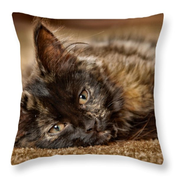 Coco Kitten Throw Pillow by Trever Miller