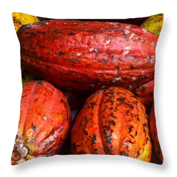 Cocoa Pods Throw Pillow by Pravine Chester