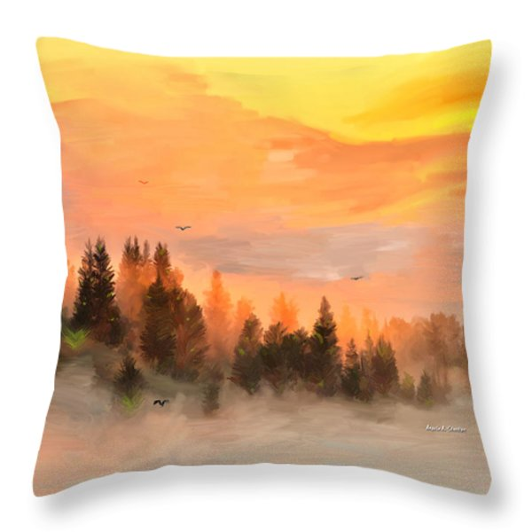 Cold Foggy Spring Morning Throw Pillow by Angela A Stanton