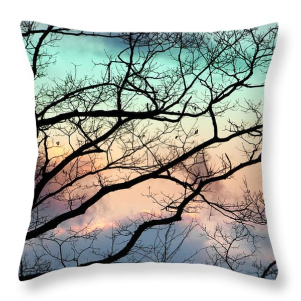 Cold Hearted Bliss Throw Pillow by Christina Rollo