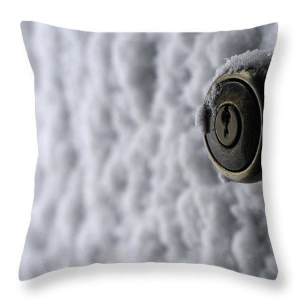 Cold Welcome Throw Pillow by Wanda Brandon