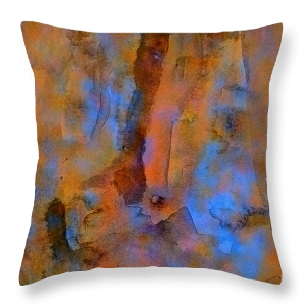 Color Abstraction XVIII Throw Pillow by David Gordon