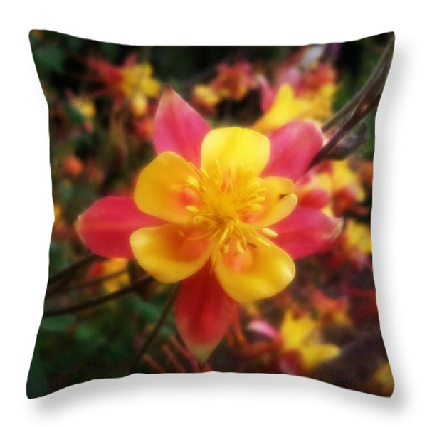 Color Burst Throw Pillow by Heather L Wright