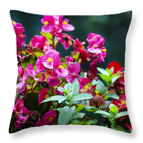 Color Explosion Throw Pillow by Sotiris Filippou