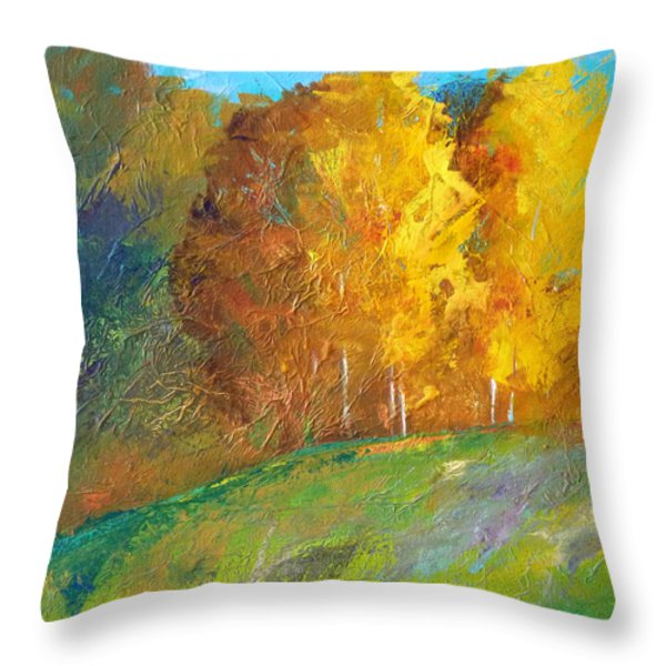 Color Throw Pillow by Nancy Merkle