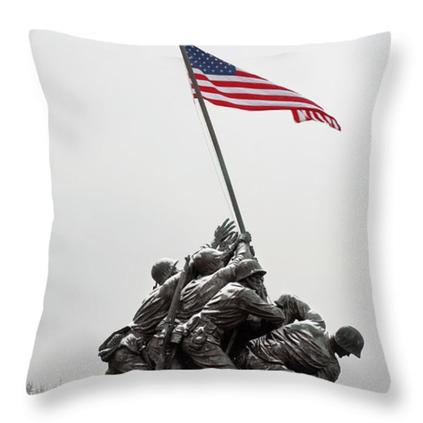 Color on a Grey Day Throw Pillow by JC Findley