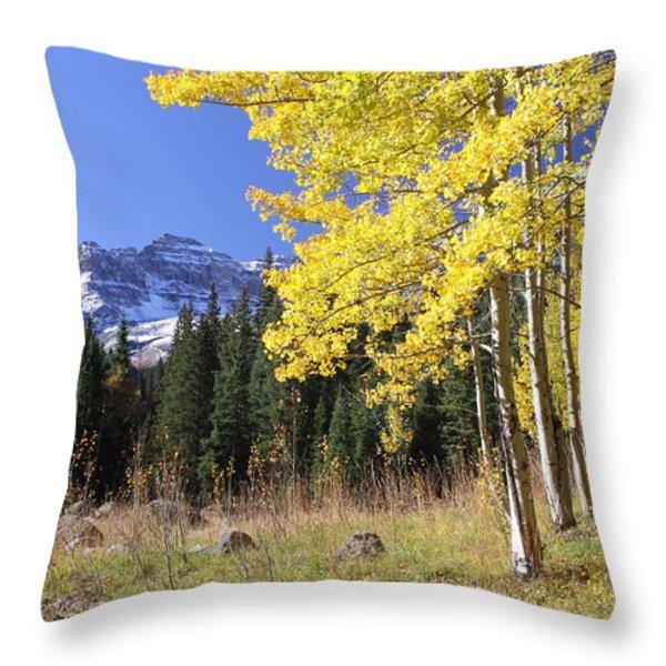 Colorado Dreamin' Throw Pillow by Eric Glaser