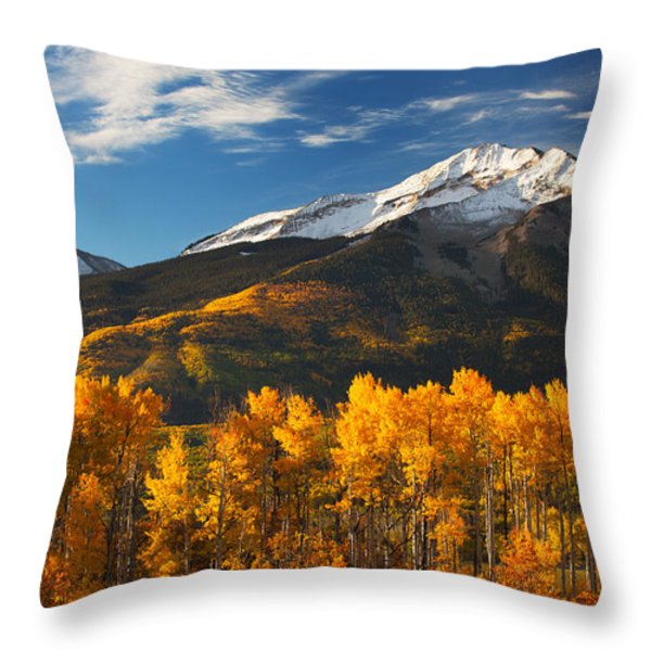 Colorado Gold Throw Pillow by Darren  White