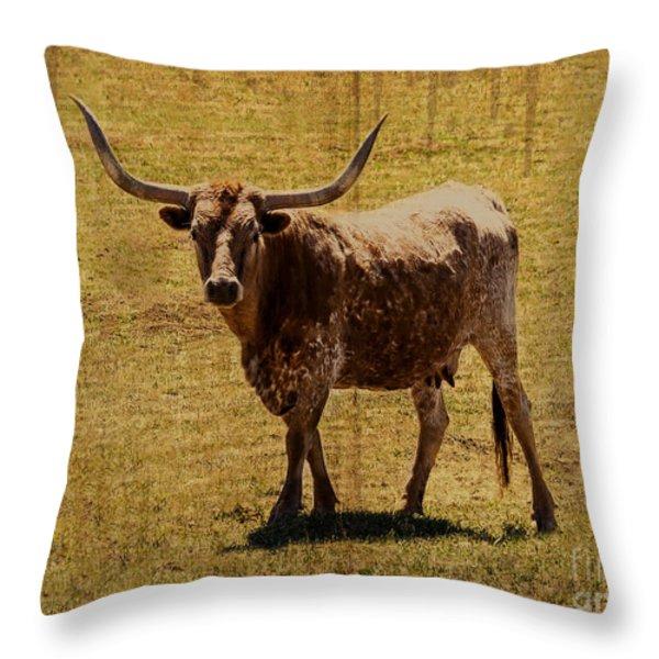 Colorado Longhorn Throw Pillow by Janice Rae Pariza