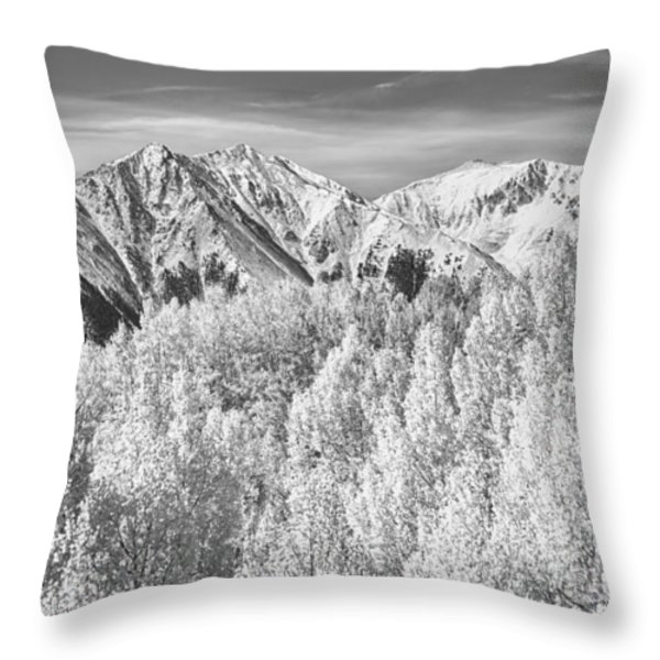 Colorado Rocky Mountain Autumn Beauty BW Throw Pillow by James BO  Insogna