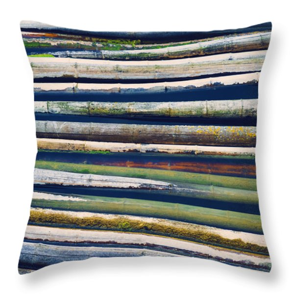 Colorful Bamboo Throw Pillow by Wim Lanclus