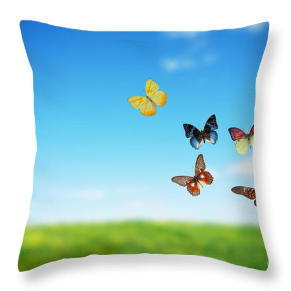 Colorful Buttefly Spring Field Throw Pillow by Michal Bednarek
