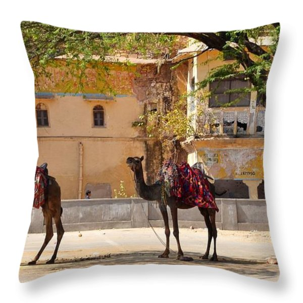Colorful Camels - Jaipur India Throw Pillow by Kim Bemis