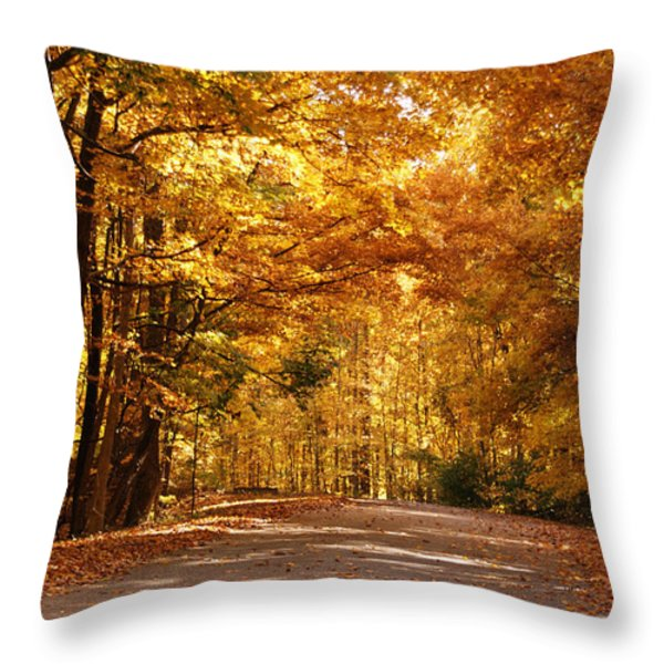 Colorful Canopy Throw Pillow by Sandy Keeton