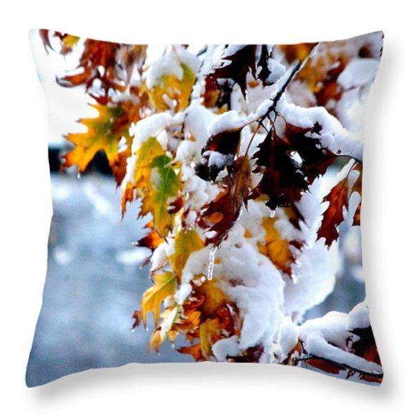 Colorful Colorado 12 Throw Pillow by Deniece Platt