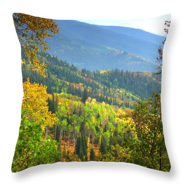 Colorful Colorado Throw Pillow by Brian Harig