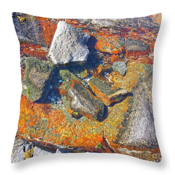 Colorful Earth History Throw Pillow by Heiko Koehrer-Wagner