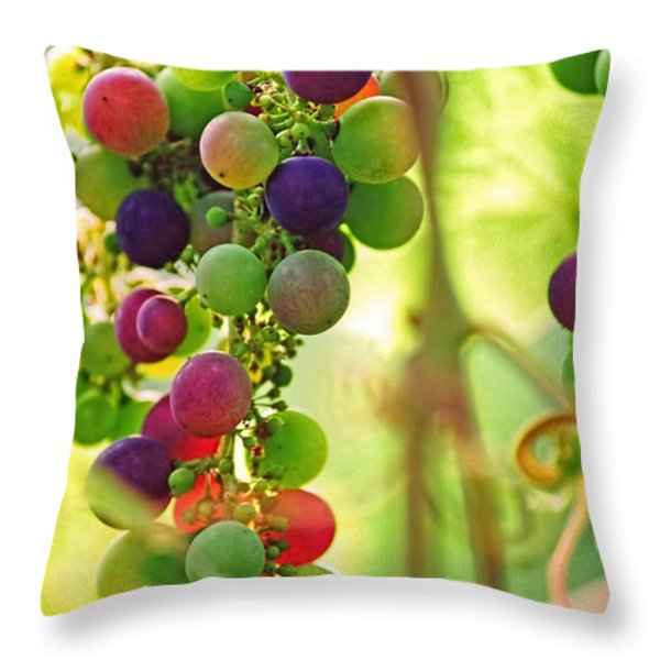 Colorful Grapes Throw Pillow by Peggy Collins