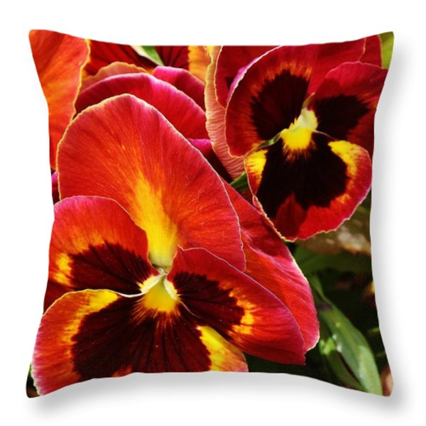 Colorful Pansies Throw Pillow by Bruce Bley