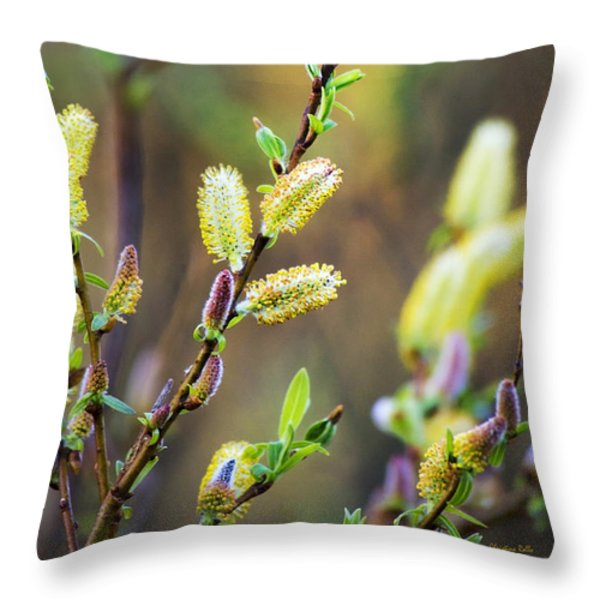 Colorful Spring Pussy Willows Throw Pillow by Christina Rollo