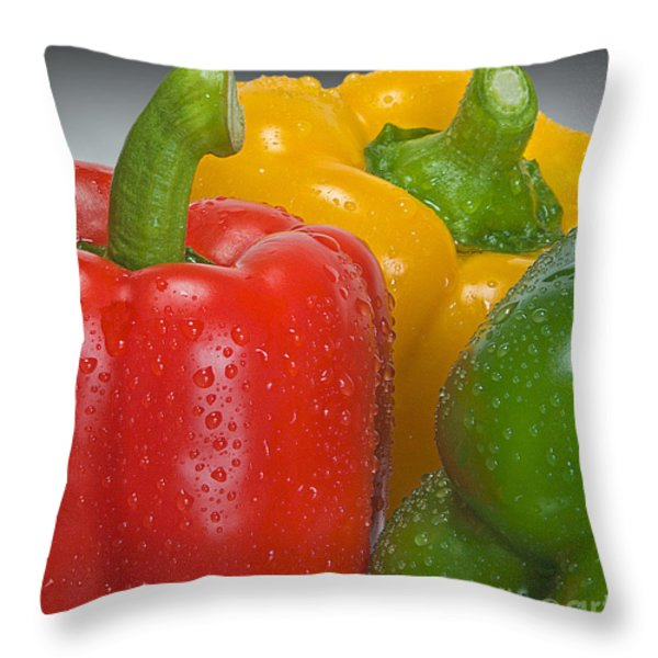 Colorful Trio Throw Pillow by Susan Candelario