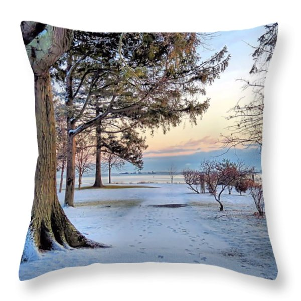Colors Of Morning Throw Pillow by Janice Drew