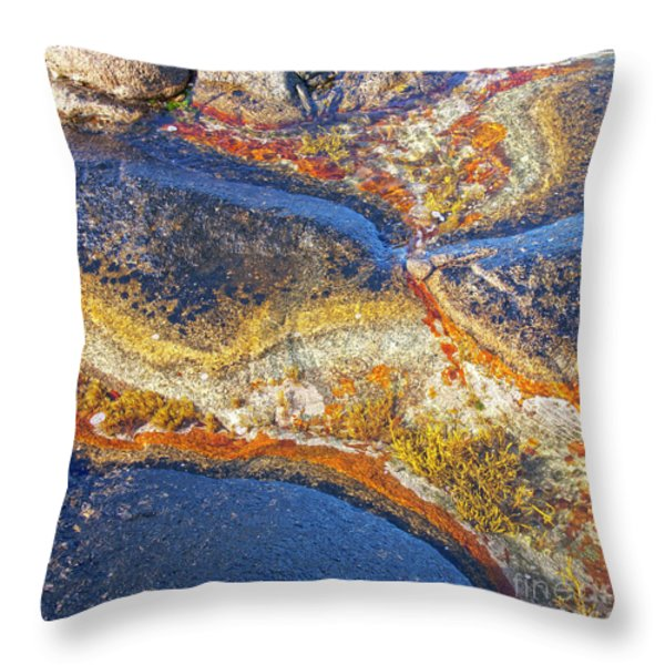 Colors on rock I Throw Pillow by Heiko Koehrer-Wagner