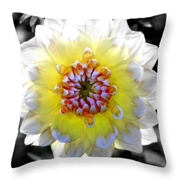 COLORWHEEL Throw Pillow by KAREN WILES