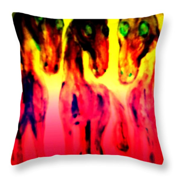 Come Out And Play Throw Pillow by Hilde Widerberg