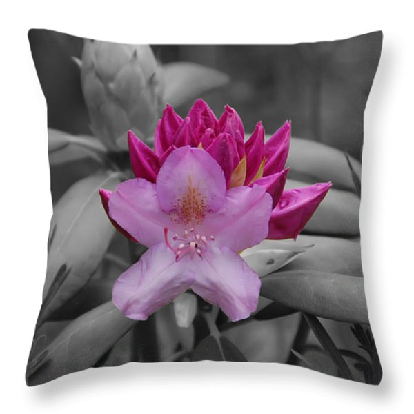 Coming To Life Throw Pillow by Aimee L Maher Photography and Art