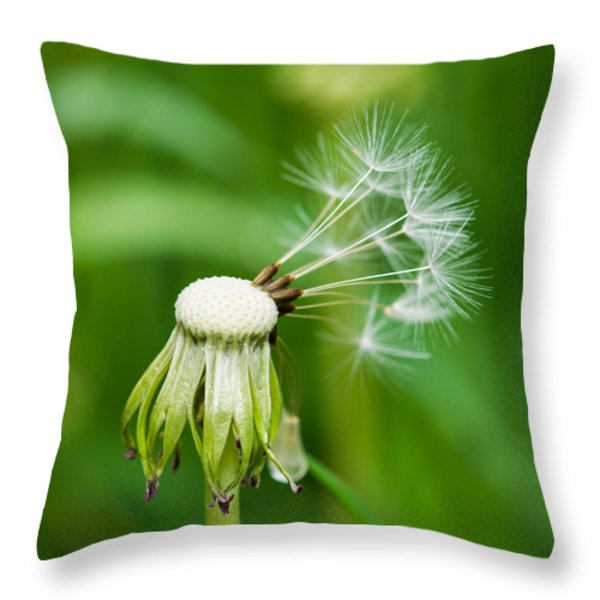 Commander In Chief - Featured 3 Throw Pillow by Alexander Senin