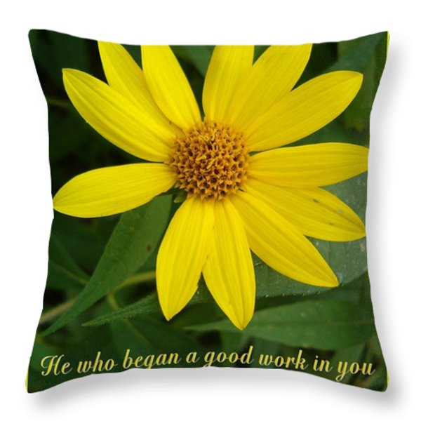 Completion Throw Pillow by Sara  Raber