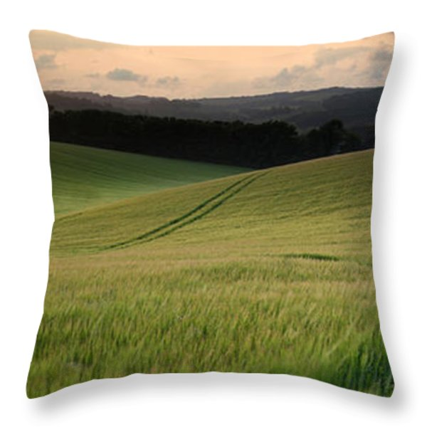 Concept panorama landscape young boy walking through field at su Throw Pillow by Matthew Gibson